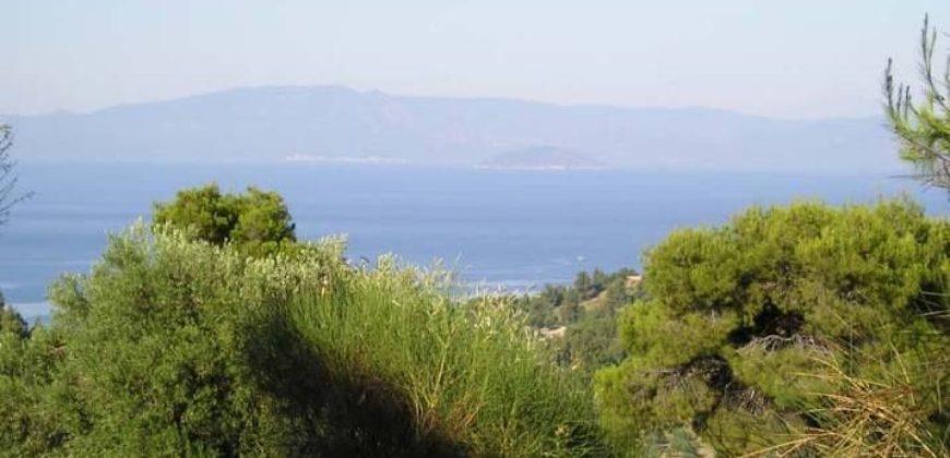 Kriopigi, Halkidiki, Greece