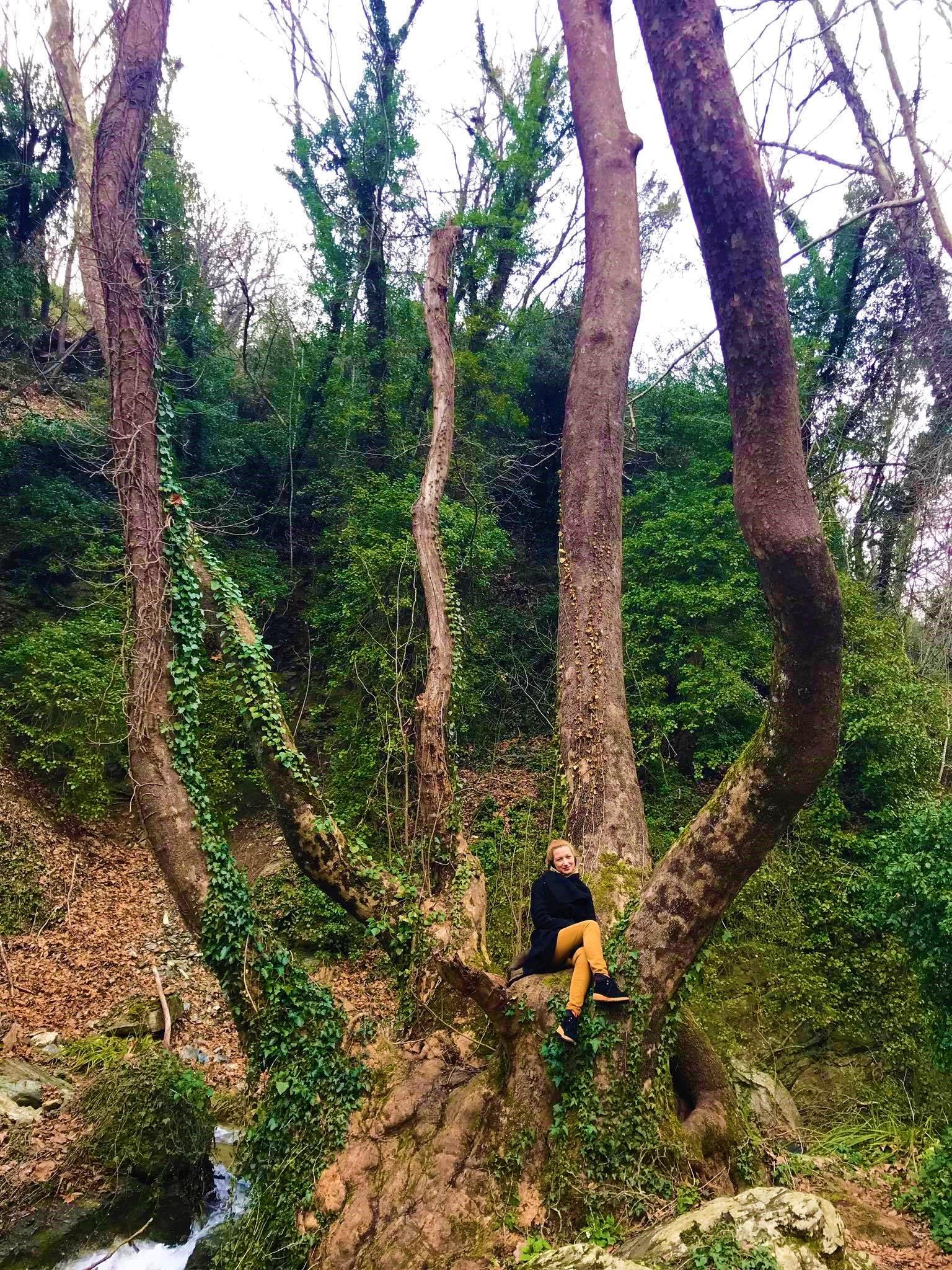 Trip to Pelion