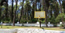 Sani, Halkidiki, Greece